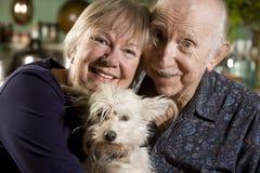 Portrait der älteren Paare mit Hund lizenzfreies stockfoto