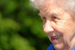 Portrait der alten Frau auf einem grünen Hintergrund Lizenzfreies Stockfoto