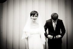 Portrait der Braut und des Bräutigams lizenzfreie stockfotografie