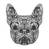 Portrait der französischen Bulldogge stockbilder