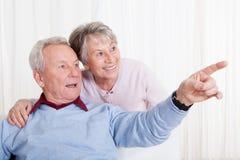 Portrait der glücklichen älteren Paare Stockfoto