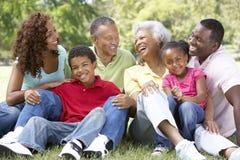 Portrait der Großfamilie-Gruppe im Park stockfotos