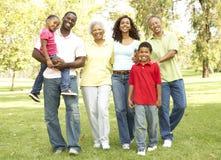 Portrait der Großfamilie-Gruppe im Park lizenzfreie stockfotografie