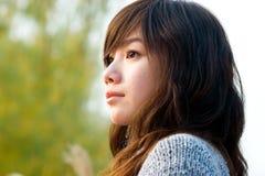 Portrait der jungen Dame Stockbilder