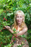 Portrait der jungen Frau in einem Garten Lizenzfreies Stockbild