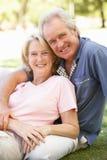 Portrait der romantischen älteren Paare im Park Stockfotografie