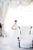 Portrait der schönen Braut kleid Lizenzfreie Stockbilder