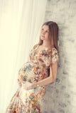 Portrait der schwangeren Frau Lizenzfreie Stockfotografie