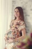 Portrait der schwangeren Frau Stockbilder