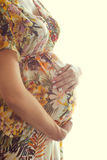 Portrait der schwangeren Frau Lizenzfreies Stockfoto