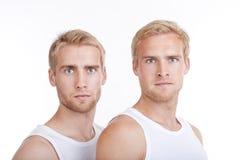 Portrait der Zwillingsbrüder Stockfotos