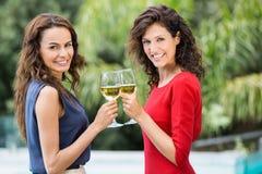 Portrait des amis de sourire grillant le vin blanc Photographie stock