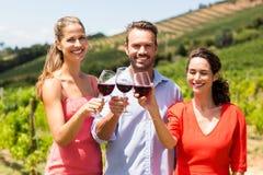 Portrait des amis heureux grillant des verres de vin Photographie stock libre de droits