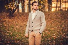Portrait des attraktiven Mannes stockfoto