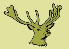 Portrait des cerfs communs illustration libre de droits