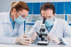 portrait des chercheurs dans les masques médicaux et des gants fonctionnant avec le microscope ensemble photo stock