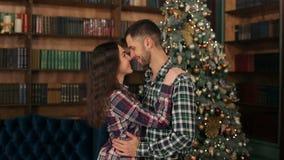 Portrait des couples affectueux près de l'arbre de Noël banque de vidéos