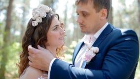 Portrait des couples européens de mariage banque de vidéos