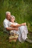 Portrait des couples mûrs gentils se reposant en parc d'été images libres de droits