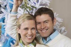 Portrait des couples sous le gui Photographie stock libre de droits