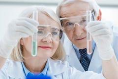Portrait des couples supérieurs de sourire des scientifiques regardant des tubes à essai photographie stock