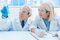 Portrait des couples supérieurs des scientifiques regardant le tube à essai photos stock