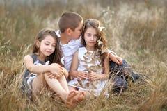 Portrait des enfants en bas âge Photos libres de droits