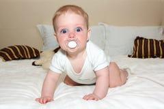 Portrait des entzückenden Schätzchens lizenzfreie stockfotos