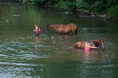 Portrait des femmes avec le cheval brun en rivière pendant la vague de chaleur photo libre de droits