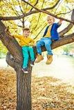 Portrait des garçons sur Autumn Tree Photographie stock libre de droits