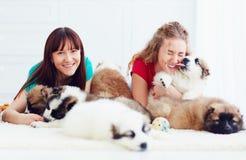 Portrait des jeunes femmes heureuses et des chiens de chiots caucasiens de berger Images stock