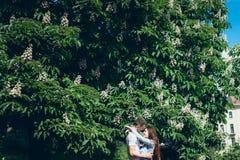 Portrait des jolis couples de sourire dans l'amour étreignant tendrement près de l'arbre de floraison vert à Budapest, Hongrie Photos stock