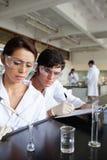 Portrait des jungen Wissenschaftskursteilnehmerarbeitens Stockbilder