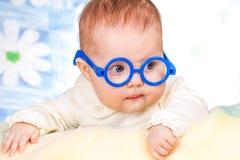 Portrait des lustigen Schätzchens mit Gläsern Lizenzfreie Stockbilder