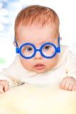 Portrait des lustigen Schätzchens mit Gläsern Stockbilder