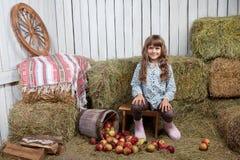 Portrait des Mädchendorfbewohners nahe Eimer mit Äpfeln Lizenzfreie Stockbilder