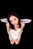 Portrait des Mädchens mit Flügeln. Studioeintragfadenfoto. lizenzfreies stockfoto