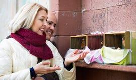 Portrait des oiseaux de alimentation de couples mûrs gais affectueux Photo stock
