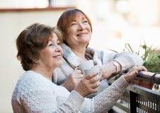 Portrait des retraités féminins positifs buvant le thé et le sourire Photographie stock libre de droits