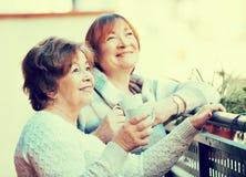 Portrait des retraités féminins positifs buvant le thé et le sourire Photo stock