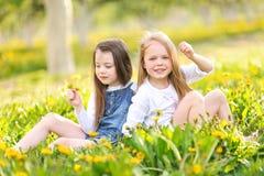 Portrait des soeurs de petites filles Image stock