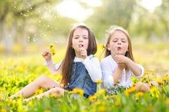 Portrait des soeurs de petites filles Image libre de droits