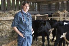 Portrait des Tierarztes im Stall mit Vieh Lizenzfreies Stockbild