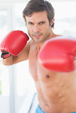 Portrait of a determined male boxer Royalty Free Stock Image