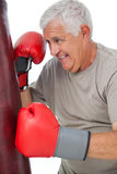 Portrait of a determined senior boxer Stock Photos