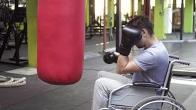 Portrait of a disabled man in a wheelchair beats a Boxing bag in the gym. Portrait of a disabled man in a wheelchair in Boxing gloves beats a pear in the gym stock footage