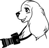 Portrait of a dog with a camera. Illustration Stock Photo