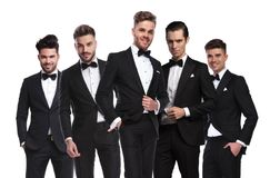 Portrait du groupe de cinq hommes élégants dans la position de tuxedoes Photos stock