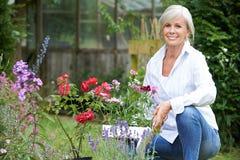 Portrait du jardinage mûr de femme image libre de droits