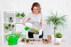 Portrait du jardinier féminin mûr plante et fleurs de ressort d'arrosage à la maison images stock